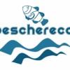 Alessandro Sammaritano   Il Peschereccio   Logo